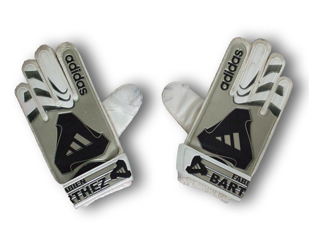 Barthez_gloves_front