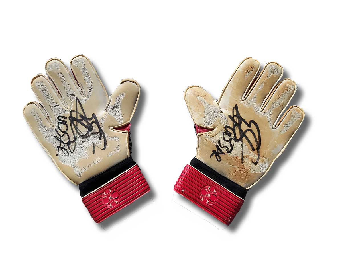 van_der_sar_gloves_palm